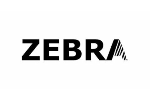 Zebra Fotostudio